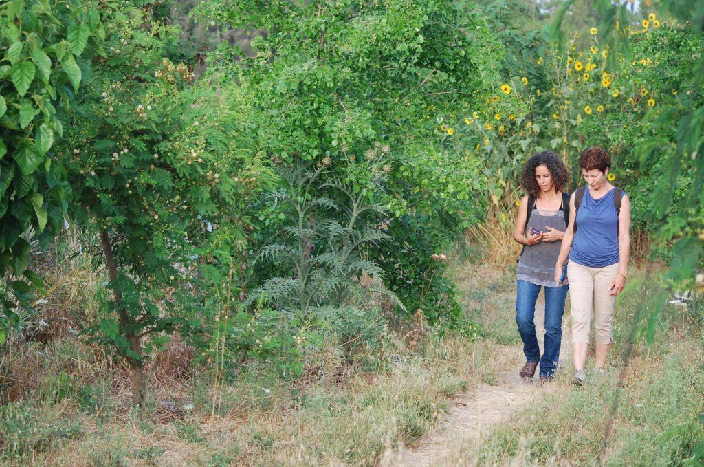 שתי נשים הולכות ביער המאכל בקדרון