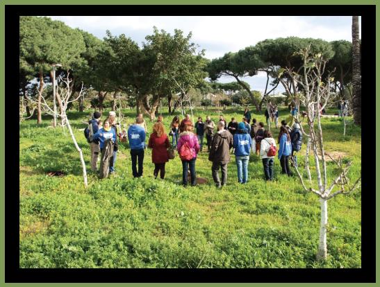 מפגשים ביער מאכל ציבורי